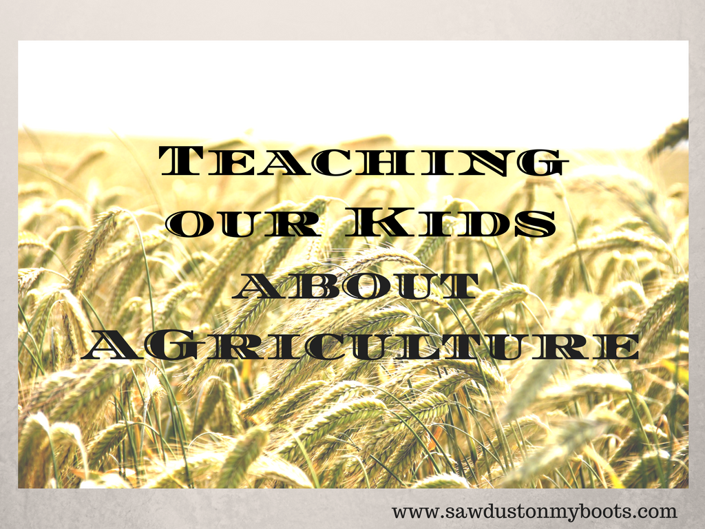 Teaching Our Kids About Agriculture