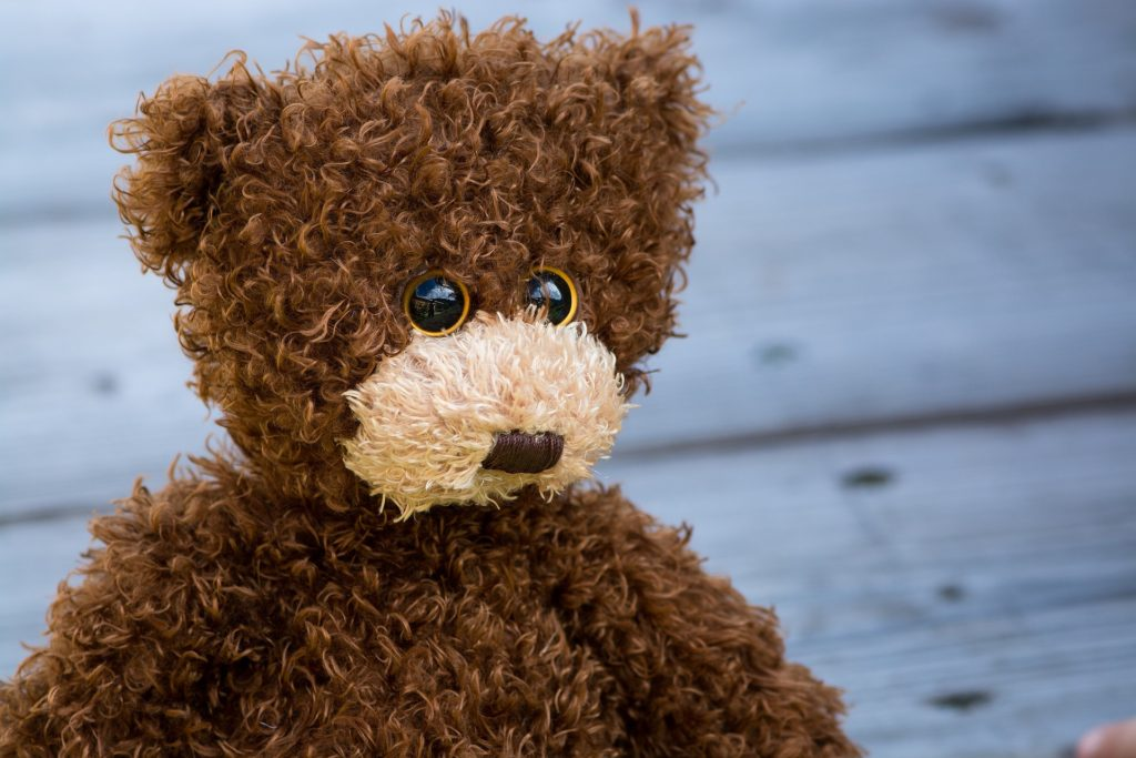 teddy-1485298_1920