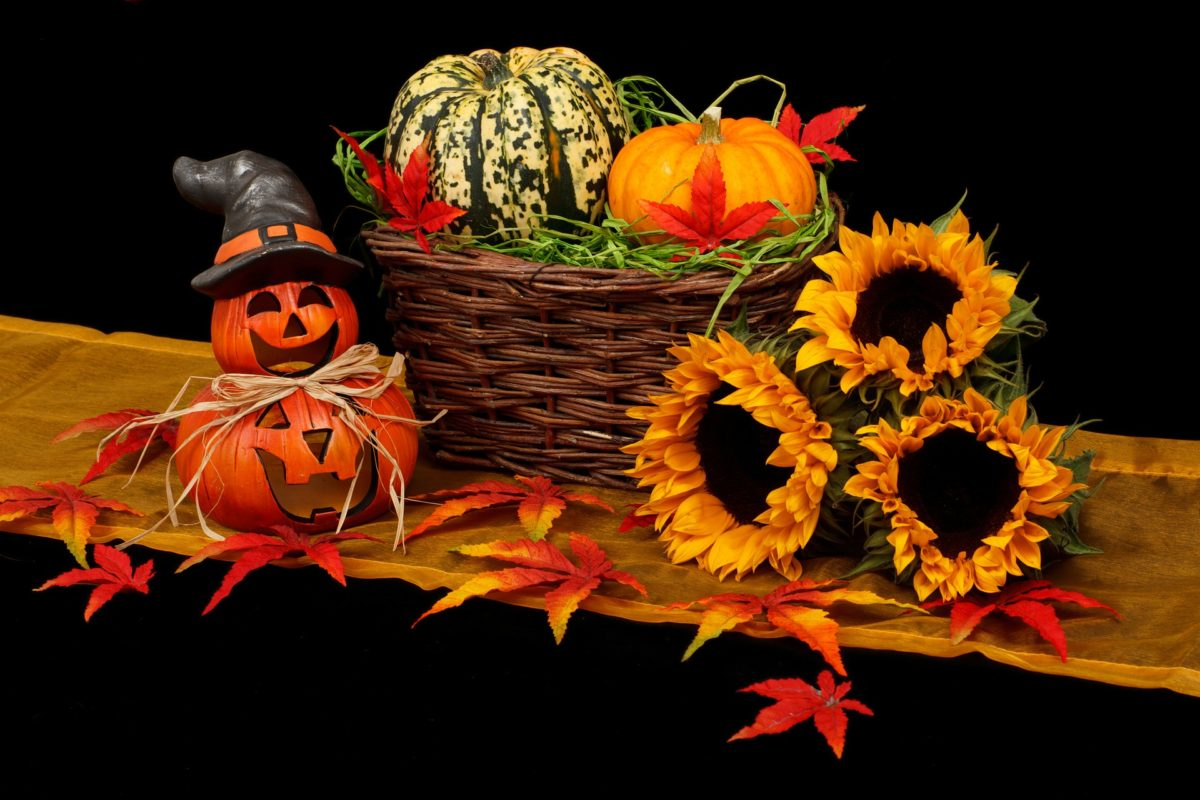 6 Quick Tips for Trick or Treating Safely