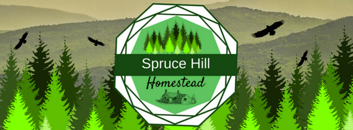 Spruce Hill Homestead